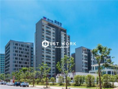 张江春申大厦 (1)