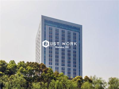 陆家嘴金融服务广场 (1)