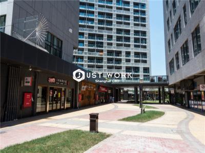 张江春申大厦 (2)