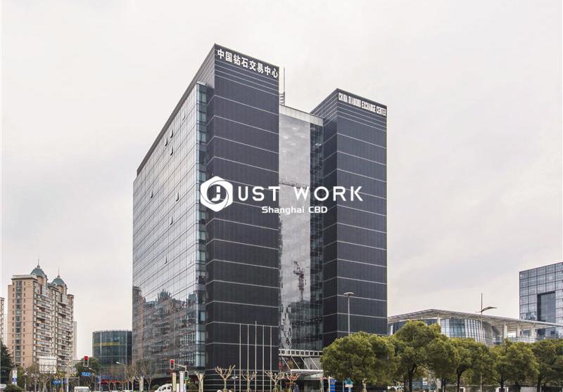 陆家嘴钻石大厦 (1)