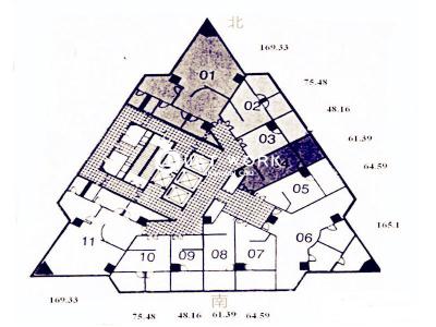 柳林大厦 (10)